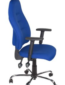 Blue Positura Ergonomic Office Chairs